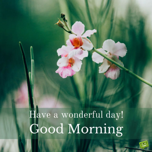 Have a wonderful day! Good Morning.