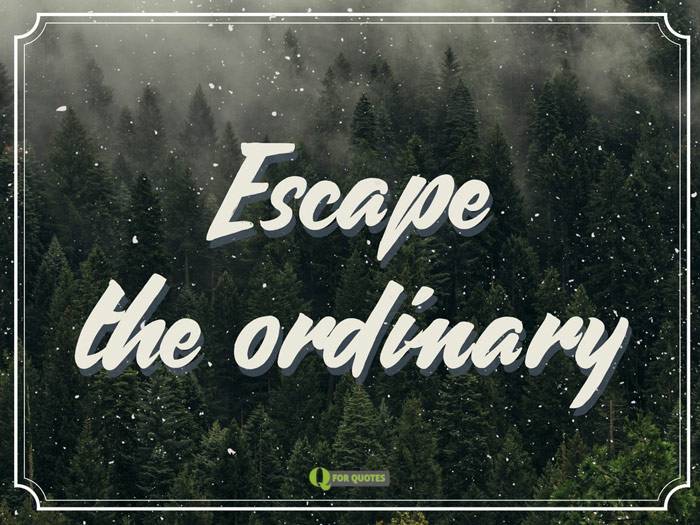 Escape the ordinary.