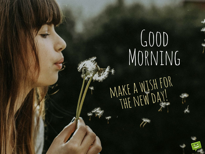 Good Morning. Make a wish for the new day.