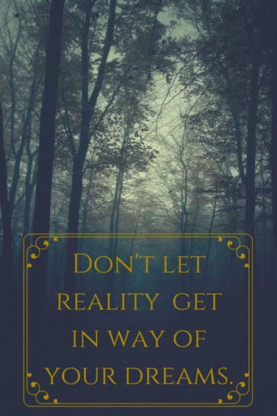 Don't let reality get in the way of your dreams.