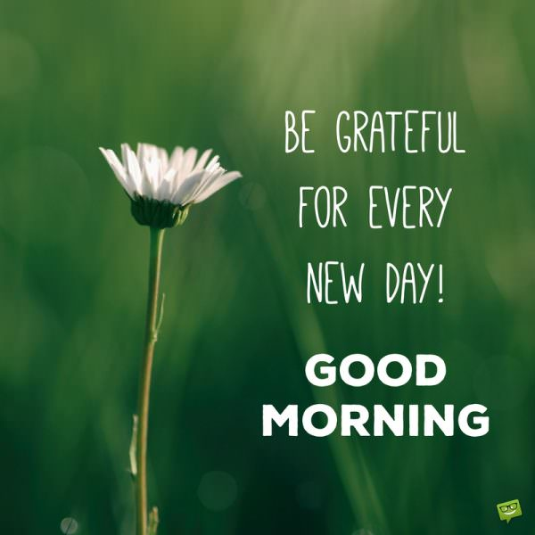 Be grateful for every new day! Good Morning.