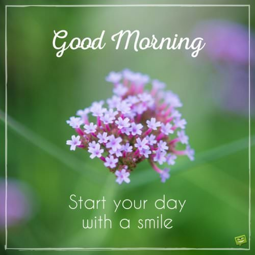 Good Morning. Start your day with a smile.