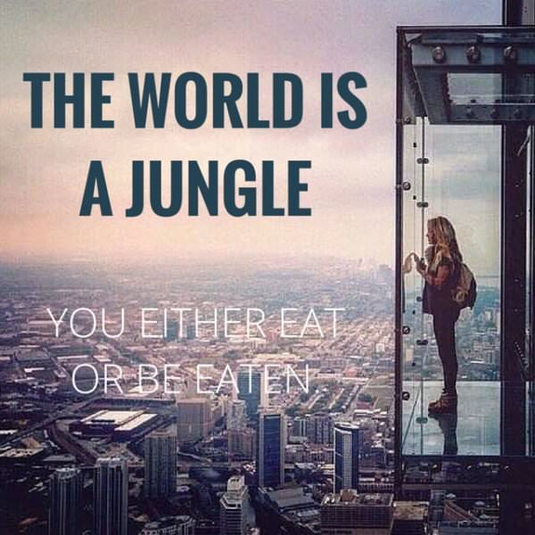 The world is a jungle. You either eat or be eaten.