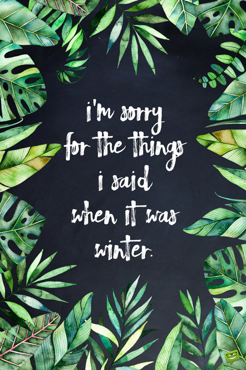 funny-summer-quote-about-winter
