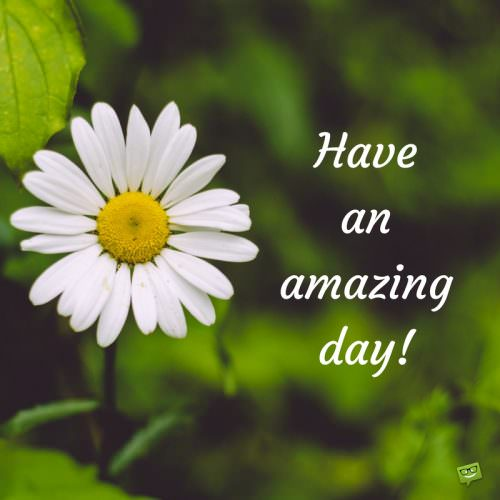 Have an amazing day!