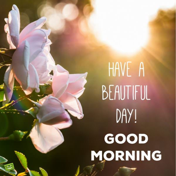 Have a beautiful day! Good Morning.