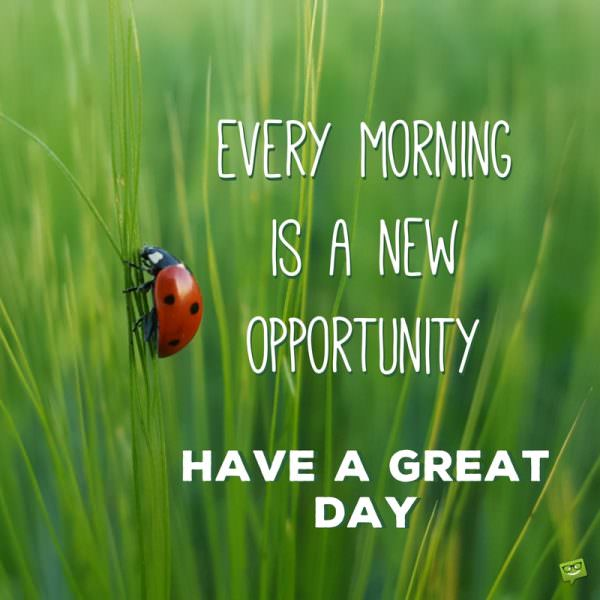 Every morning is a new opportunity. Have a great day.