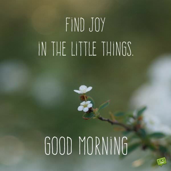 Find joy in the little things. Good morning.