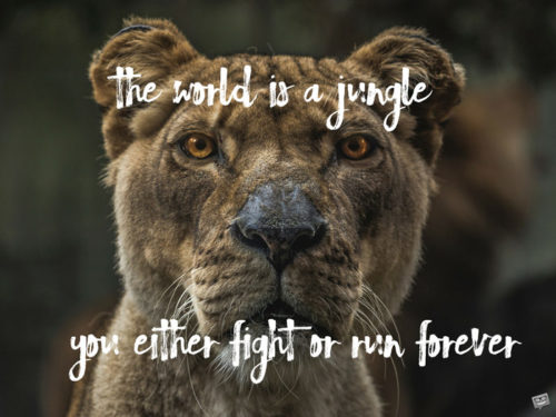 The world is a jungle. You either fight or run forever.