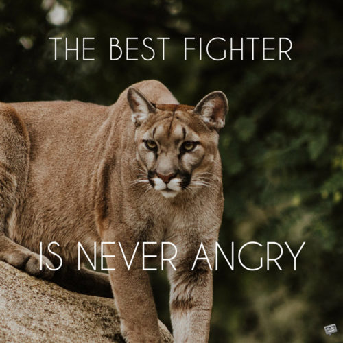 The best fighter is never angry.