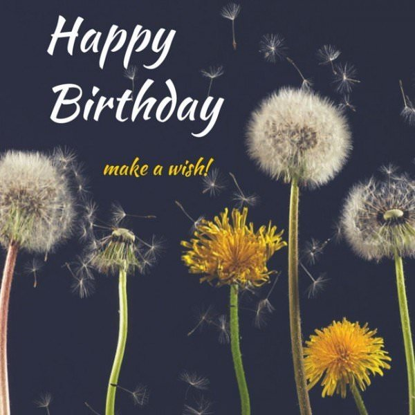 30 Birthday Wishes eCards to Share, Post and Pin