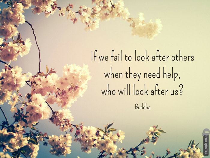 If we fail to look after others when they need help, who will look after us? Buddha.