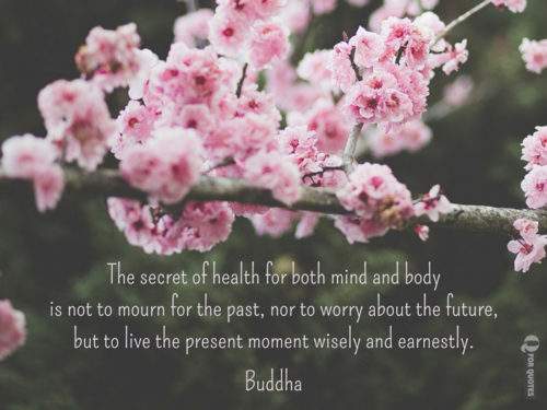 The secret of health for both mind and body is not to mourn for the past, nor to worry about the future, but to live the present moment wisely and earnestly. Buddha.
