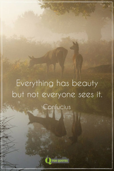 Everything has beauty but not everyone sees it. Confucius