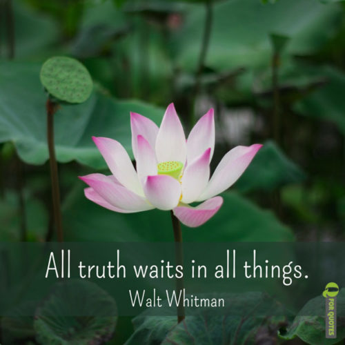 All truth waits in all things. Walt Whitman
