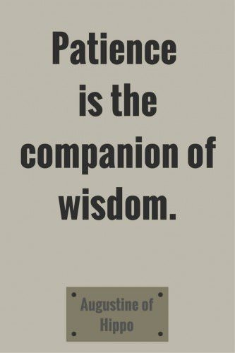 Patience is the companion of wisdom. Augustine of Hippo