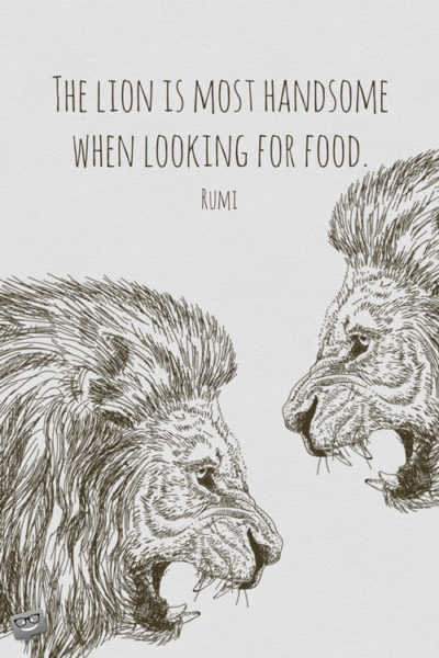 The lion is most handsome when looking for food. - Rumi