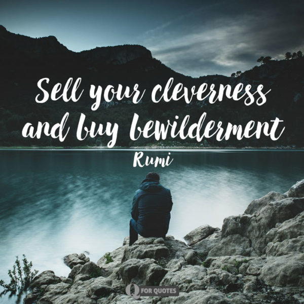 Sell your cleverness and buy bewilderment. Rumi