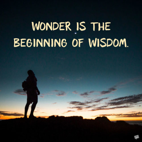 Wonder is the beginning of wisdom. Socrates
