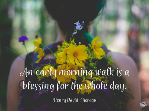 An early morning walk is a blessing for the whole day. Henry David Thoreau.