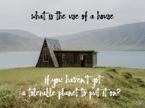 What is the use of a house if you haven't got a tolerable planet to put it on? Henry David Thoreau