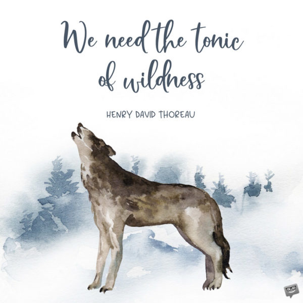 We need the tonic of wildness... Henry David Thoreau