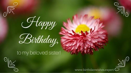 Happy Birthday to my beloved sister on image with flower.