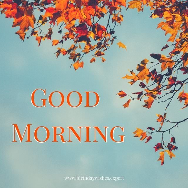 15 Good Morning Images For Free Download