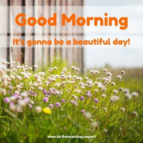 Good Morning, it's gonna be a beautiful day!