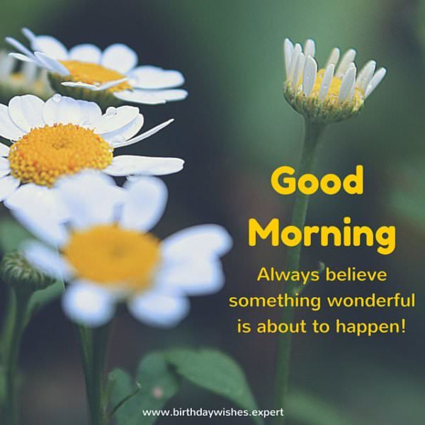 Good morning.  Always believe something wonderful is about to happen!
