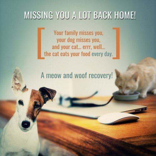 Missing you a lot back home! Your family misses you, your dog misses you and your cat… well… eats some of your food every day. A meow and woof recovery!