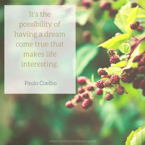 It's the possibility of having a dream come true that makes life interesting. Paulo Coelho