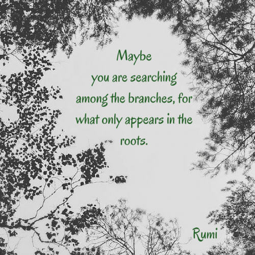 Maybe you are searching among the branches, for what only appears in the roots. Rumi
