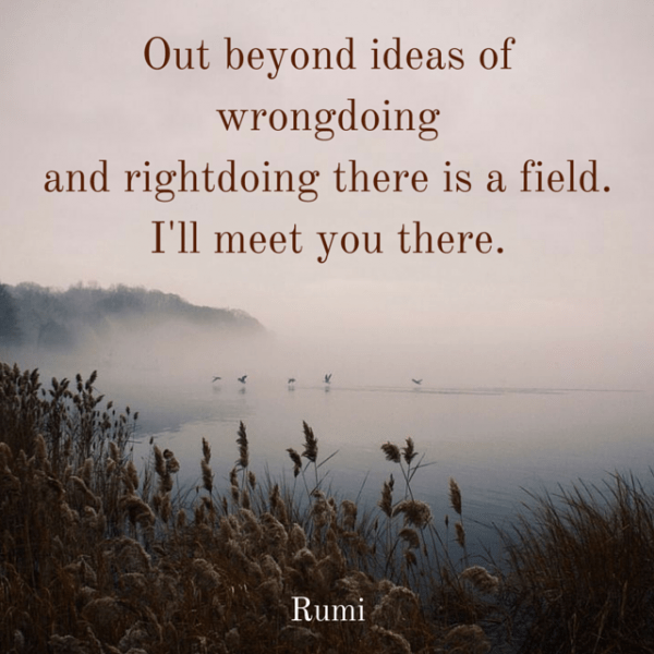 Out beyond ideas of wrongdoing and rightdoing there is a field. I'll meet you there. Rumi