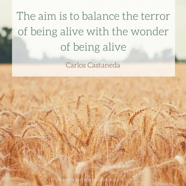 The aim is to balance the terror of being alive with the wonder of being alive. Carlos Castaneda.