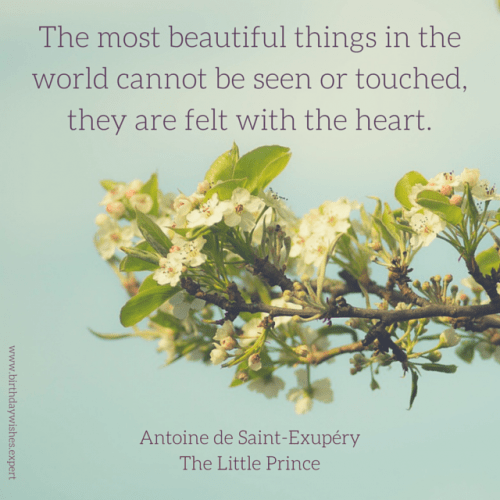 The most beautiful things in the world cannot be seen or touched, they are felt with the heart. Antoine de Saint-Exupery, The Little Prince