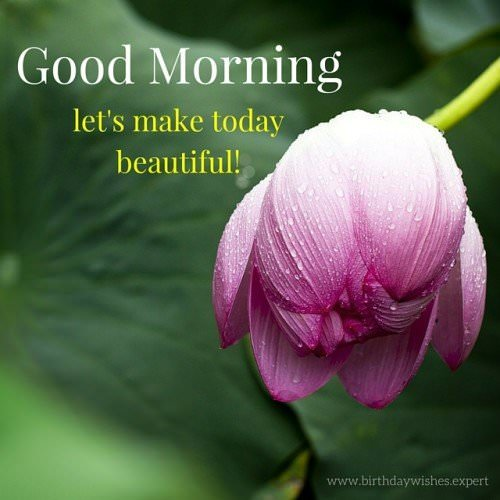 Good Morning. Let's make today beautiful.