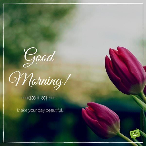 Good Morning. Make your day beautiful.