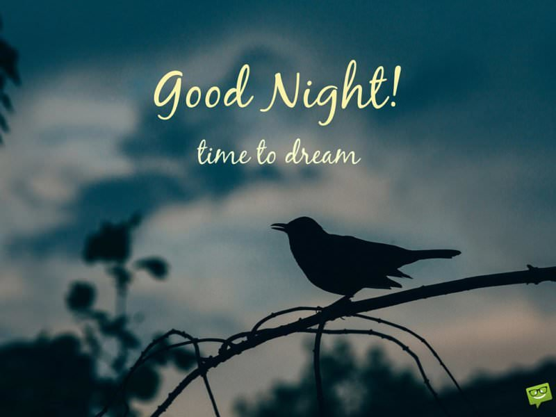 Good night. Time to dream.