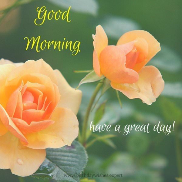 Good Morning. Have a great day.