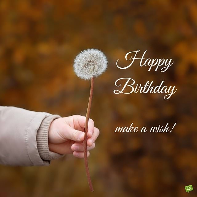 Happy Birthday Wish on image with dandelion