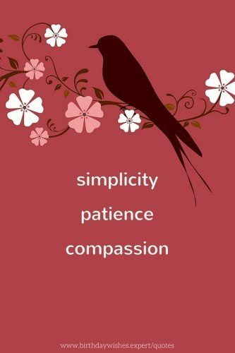 Simplicity. Patience. Compassion.