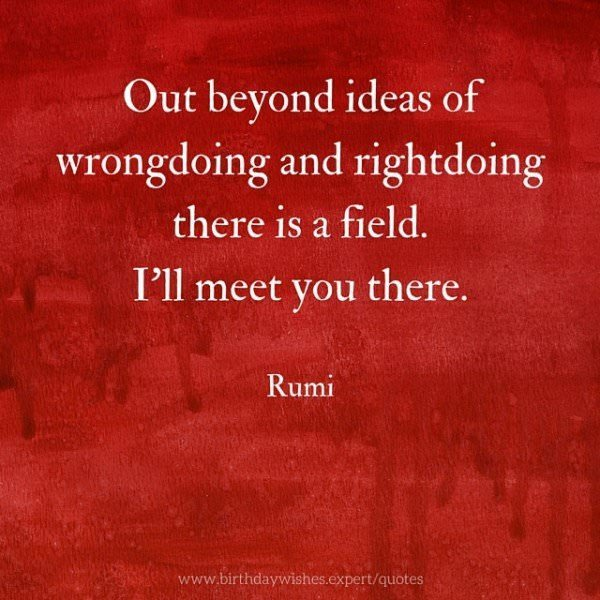 Out beyond ideas of wrongdoing and right doing there is a field. I'll meet you there. Rumi
