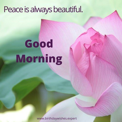 Good Morning. Peace is always beautiful.