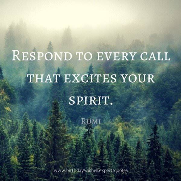 Respond to every call that excites your spirit.  Rumi