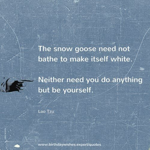 The snow goose need not bathe to make itself white. Neither need you do anything but be yourself. Lao Tzu.