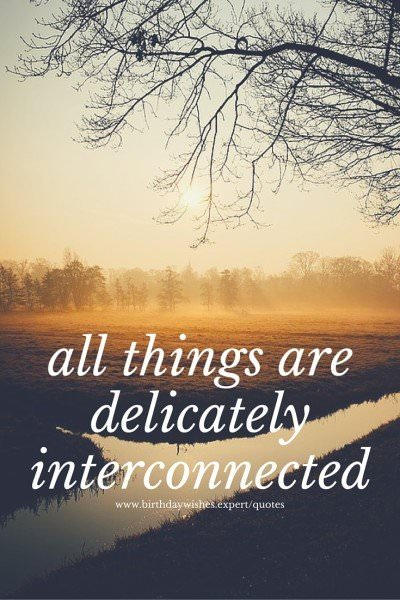All things are delicately interconnected.