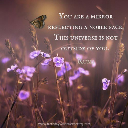 You are a mirror reflecting a noble face. This universe is not outside of you. Rumi