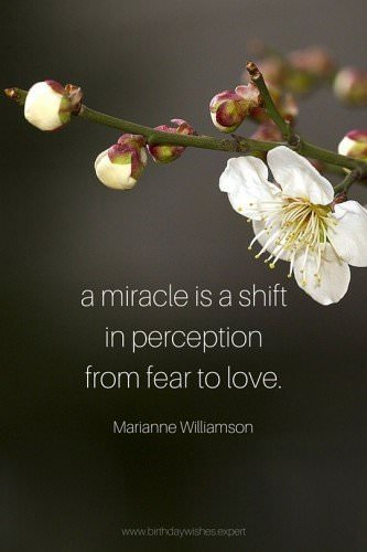 A miracle is a shift in perception from fear to love. Marianne Williamson
