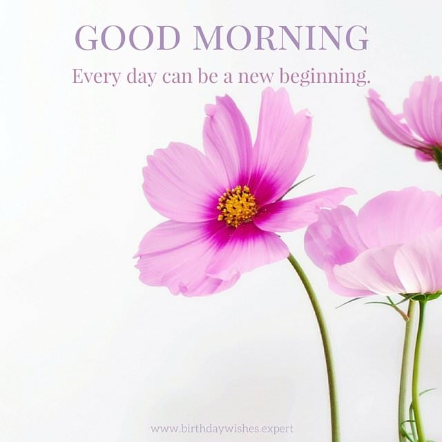 Wonderful Quotes Usi Comg Flowers: 60 Beautiful Flower Images With Inspiring Good Morning Quotes